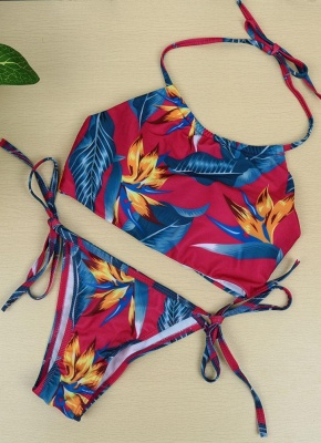 Floral Print Halter Wireless Padded Two Piece Sexy Bikini Set Swimwear_6