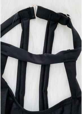 Choker Neck Hollow Bandage Padded Bikini Set_10