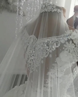 2021 Luxury Sleeveless Crystal Wedding Dresses   Sheer Tulle Flowers Bridal Gowns with Beading BC0708_5