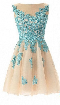 Mint Lace Sheer Short Homecoming Dresses Crew Neck Cocktail Dresses_1