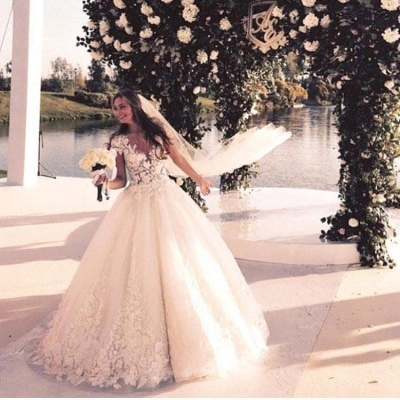 Gorgeous Short Sleeve Tulle Bridal Gowns New Lace Applique Long Princess Dresses_4