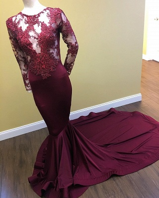 Mermaid Long Sleeve Long Prom Dresses Cheap on Mannequins | Sheer Tulle Appliques Formal Dresses_3