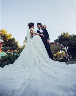 Long Sleeve Lace Wedding Dresses | Ball Gown Long Train See Through Back Bride Dress_5