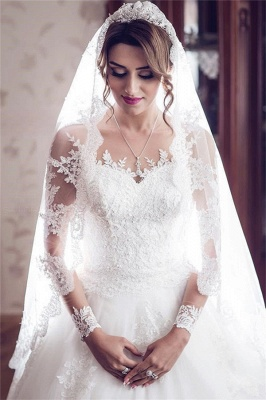 Long Sleeve Lace Wedding Dresses | Ball Gown Long Train See Through Back Bride Dress_1