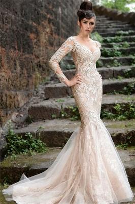 V-neck Long Sleeve Wedding Dresses Ivory | Cheap Mermaid Sexy Lace Evening Dresses 2021 bc1589_1