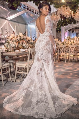 Long Sleeve V-neck Lace Wedding Dresses Cheap | Open Back See Through 2019 Bridal Gown BC0249_3
