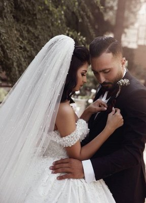 Off The Shoulder Beads Appliques Wedding Dresses 2021 | Princess Sexy Ball Gown Royal Wedding Dress Cheap_5