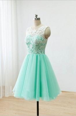 Short Lace Homecoming Dresses Sheer Buttons Back Elegant Mint Prom Dresses_1