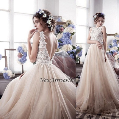 Romantic Fluffy Tulle Sleeveless Vintage Lace Open Back Sexy Wedding Dresses_1