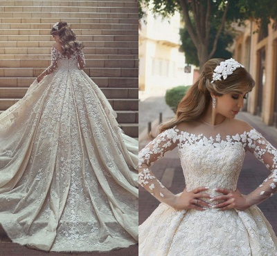 See Through Tulle Appliques Ivory Wedding Dresses | Long Sleeve Bridal Gowns with Cathedral Train_5