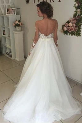 Sheer Long Sleeve Lace Wedding Dresses Open Back Tulle Ball Gown Bridal Dress_3