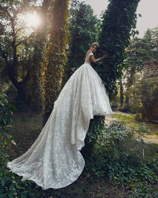 Off The Shoulder Sequins Appliques Ball Gown Wedding Dresses | Sexy Backless Lace Bridal Gowns_2