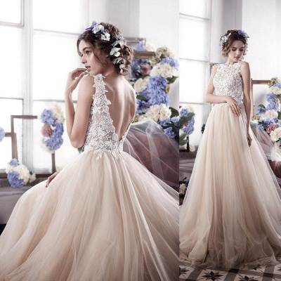 Romantic Fluffy Tulle Sleeveless Vintage Lace Open Back Sexy Wedding Dresses_4